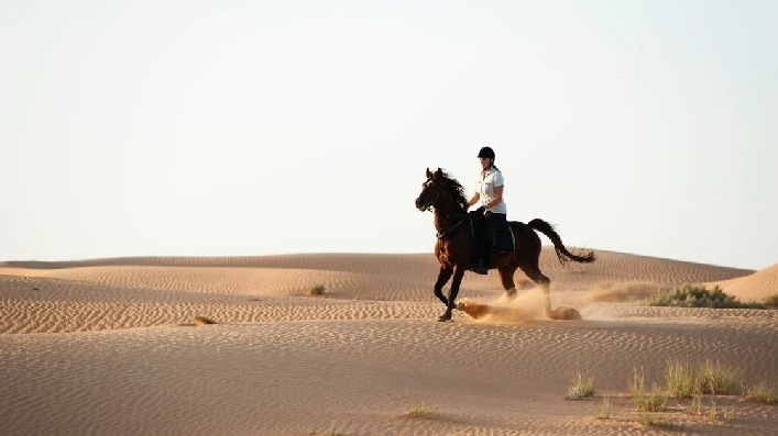 Horse Riding Lessons OR Horse Riding Desert Hack