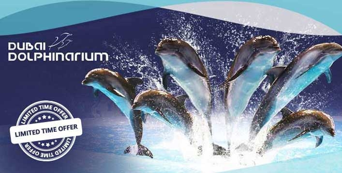 Dubai Dolphinarium - Dolphin & Seal Show Regular & VIP Tickets