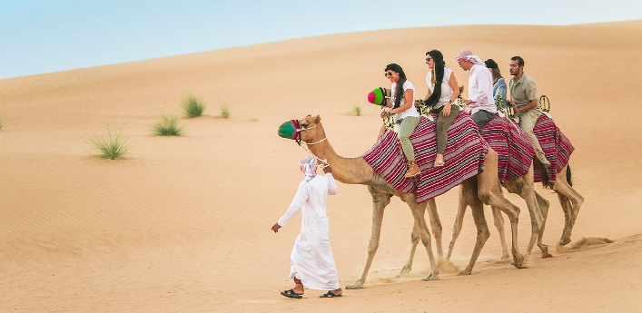 Desert Safari AED35 - Centralized Pick Up (AED49) Burjuman & DCC