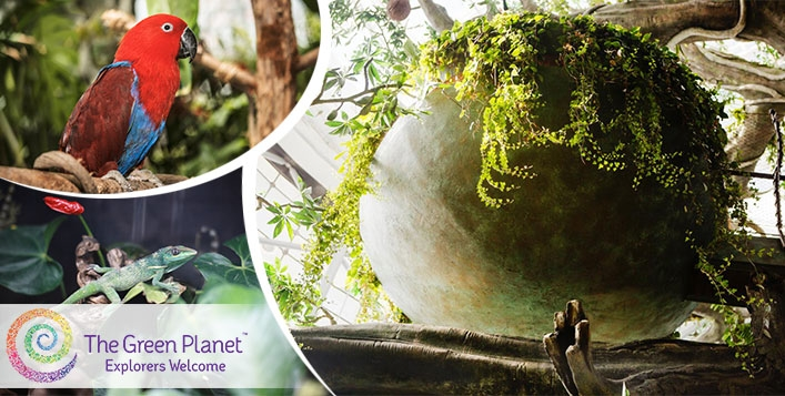 Green Planet (City Walk) 1 Day Access Pass - Child AED69 & Adult AED89